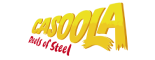 cassoola logo